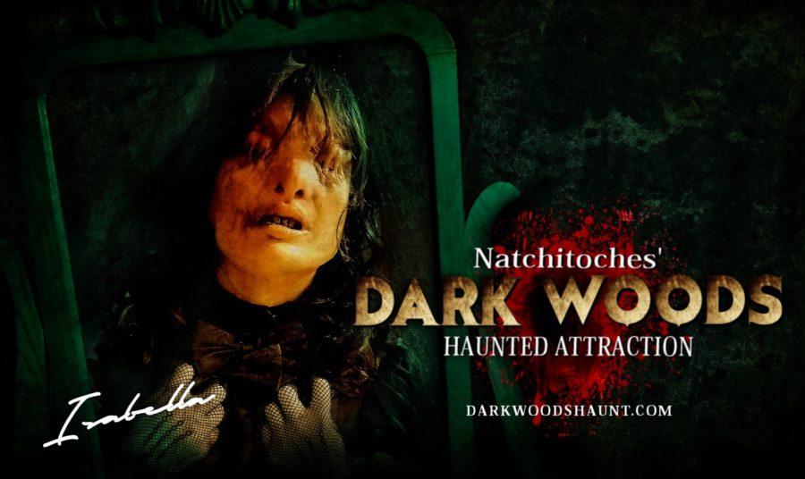 Dark Woods seeking actors