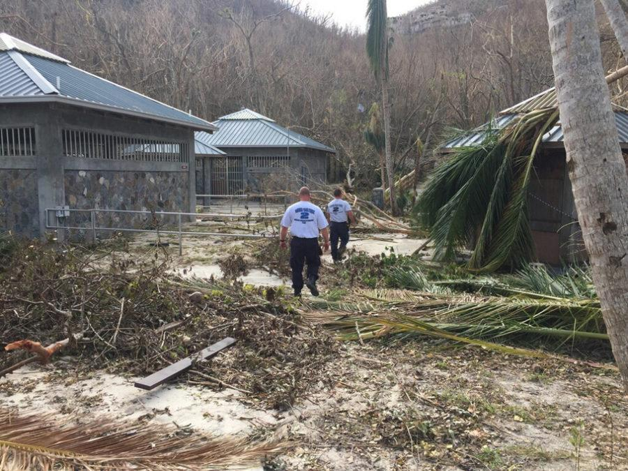 New York Task Force 1 and Virginia Task Force 1 and 2 conduct search and rescue operations on St. Thomas and St. John, part of the U.S. Virgin Islands. Photo credit: FEMA News Photo